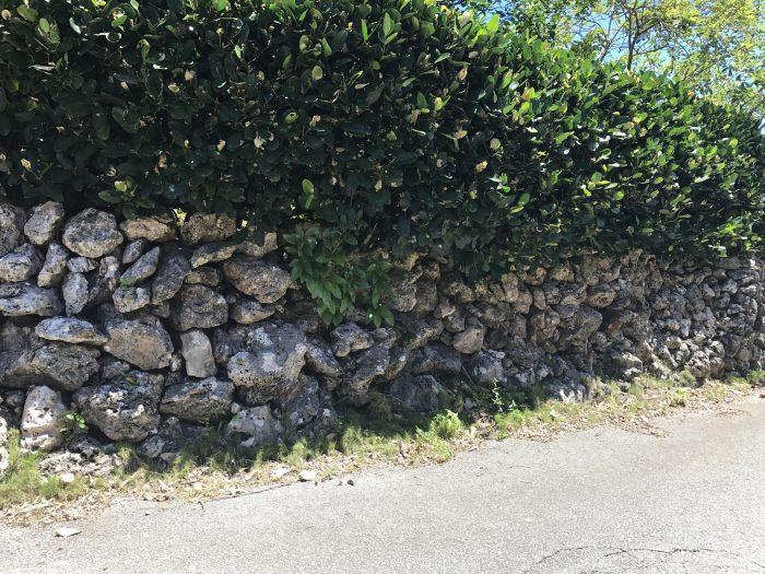 こんな石垣って本島じゃあまり見かけなくなったよね。